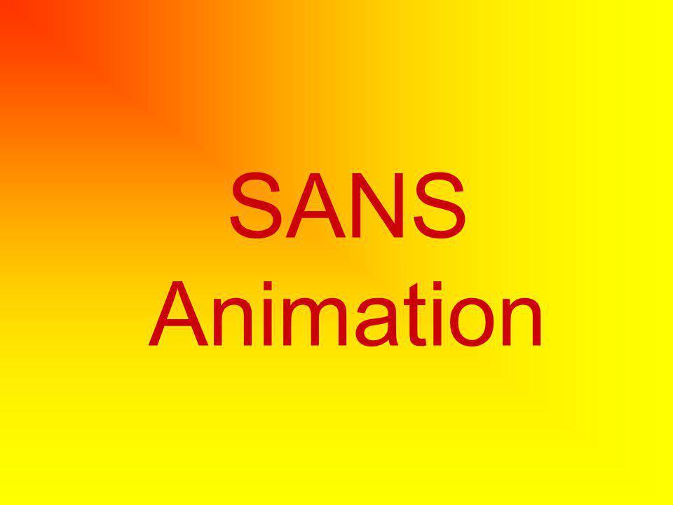 SANS Animation