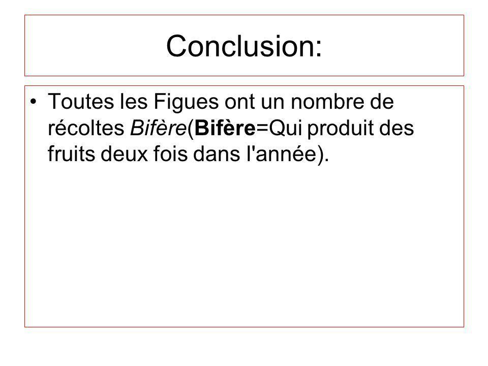 Conclusion: Toutes les Figues ont un nombre de récoltes Bifère(Bifère=Qui produit des fruits deux fois dans l'année).