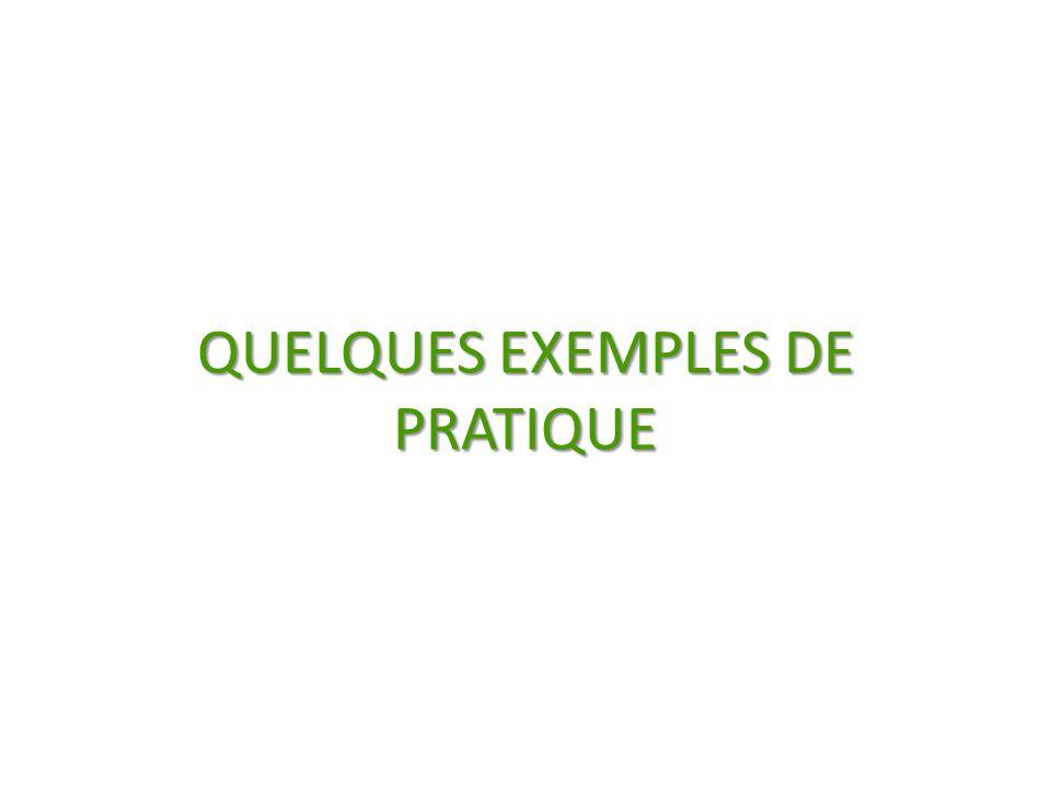 QUELQUES EXEMPLES DE PRATIQUE