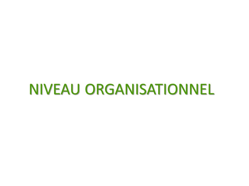 NIVEAU ORGANISATIONNEL