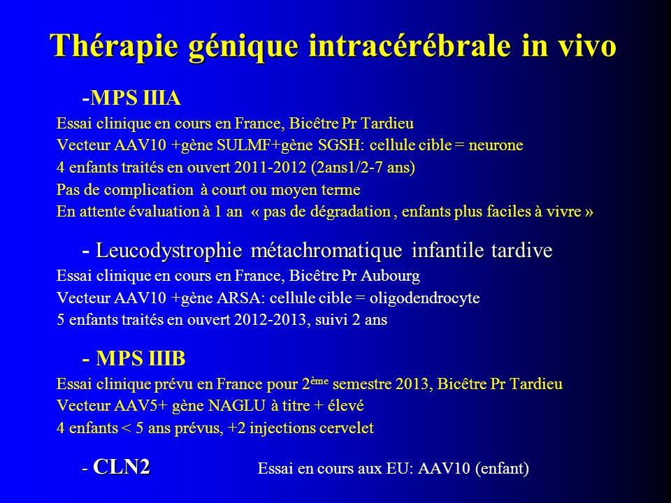 Thérapie génique intracérébrale in vivo -MPS IIIA Essai clinique en cours en France, Bicêtre Pr Tardieu Vecteur AAV10 +gène SULMF+gène SGSH: cellule c