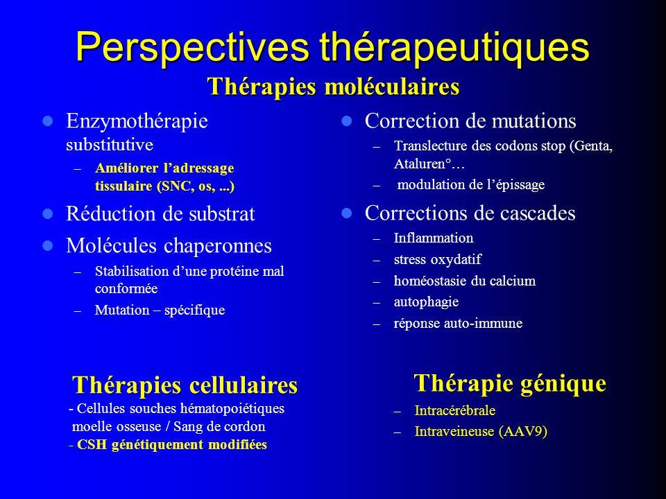 Perspectives thérapeutiques Thérapies moléculaires Enzymothérapie substitutive – Améliorer l'adressage tissulaire (SNC, os,...) Réduction de substrat Molécules chaperonnes – Stabilisation d'une protéine mal conformée – Mutation – spécifique Correction de mutations – Translecture des codons stop (Genta, Ataluren°… – modulation de l'épissage Corrections de cascades – Inflammation – stress oxydatif – homéostasie du calcium – autophagie – réponse auto-immune Thérapie génique – Intracérébrale – Intraveineuse (AAV9) Thérapies cellulaires - Cellules souches hématopoiétiques moelle osseuse / Sang de cordon - CSH génétiquement modifiées