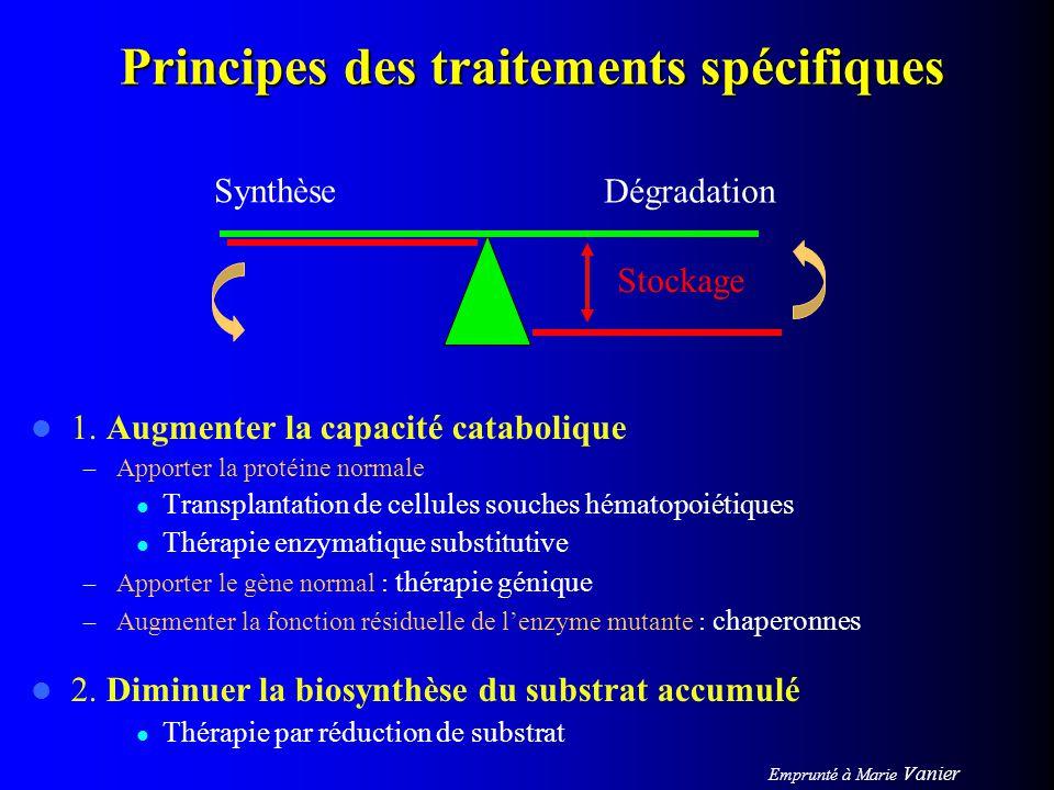 Principes des traitements spécifiques 1. Augmenter la capacité catabolique – Apporter la protéine normale Transplantation de cellules souches hématopo