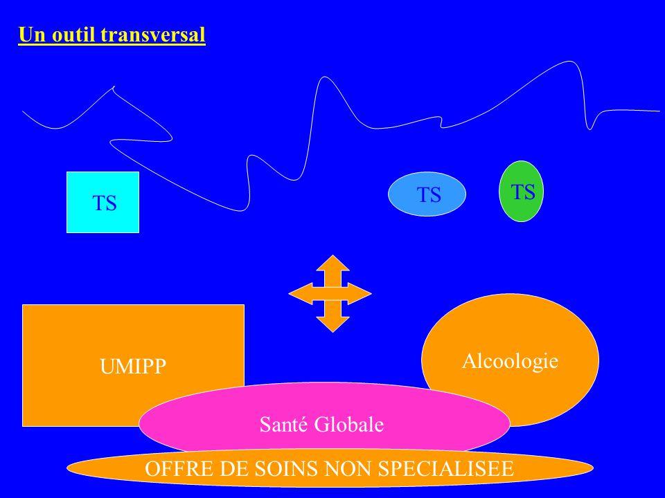 UMIPP Alcoologie Santé Globale TS OFFRE DE SOINS NON SPECIALISEE Un outil transversal