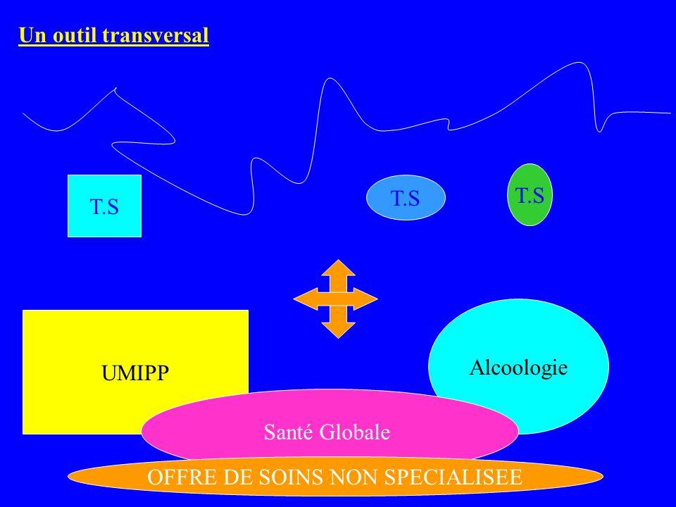 UMIPP Alcoologie Santé Globale T.S OFFRE DE SOINS NON SPECIALISEE Un outil transversal