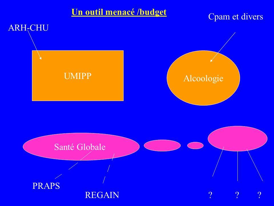 UMIPP Alcoologie Santé Globale ARH-CHU Cpam et divers PRAPS REGAIN? ? ? Un outil menacé /budget