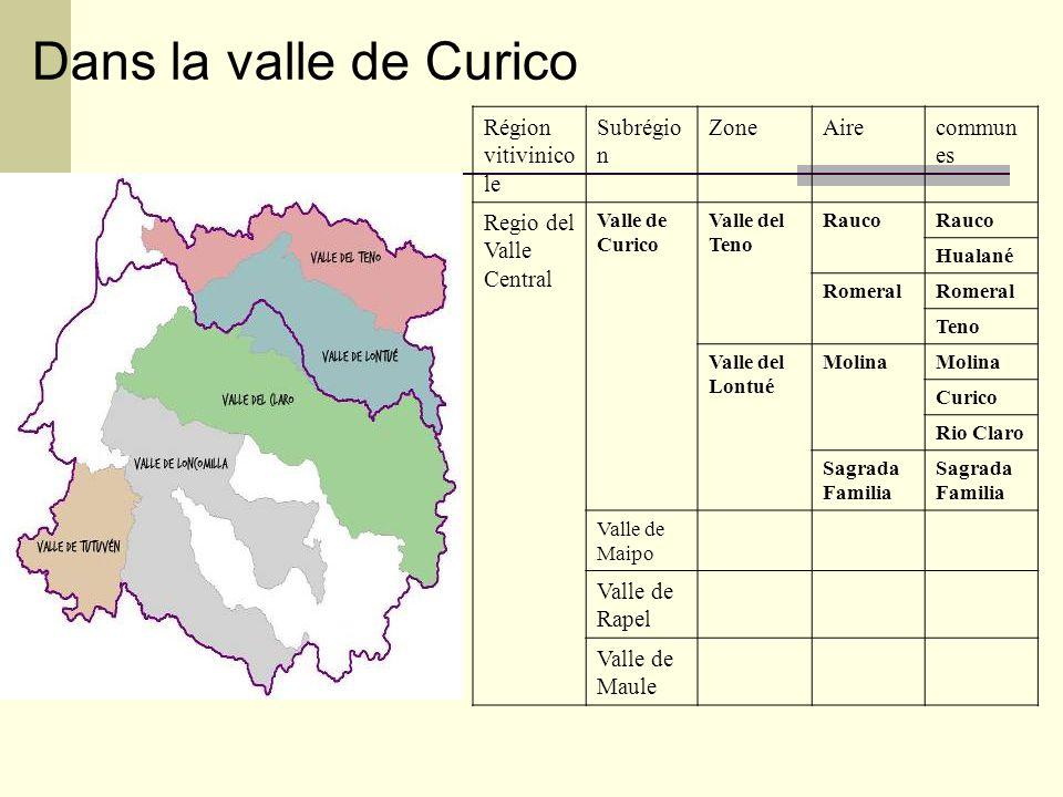 Région vitivinico le Subrégio n ZoneAirecommun es Regio del Valle Central Valle de Curico Valle del Teno Rauco Hualané Romeral Teno Valle del Lontué Molina Curico Rio Claro Sagrada Familia Valle de Maipo Valle de Rapel Valle de Maule Dans la valle de Curico