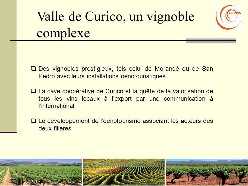 Valle de Curico, un vignoble complexe  Des vignobles prestigieux, tels celui de Morandé ou de San Pedro avec leurs installations oenotouristiques  L