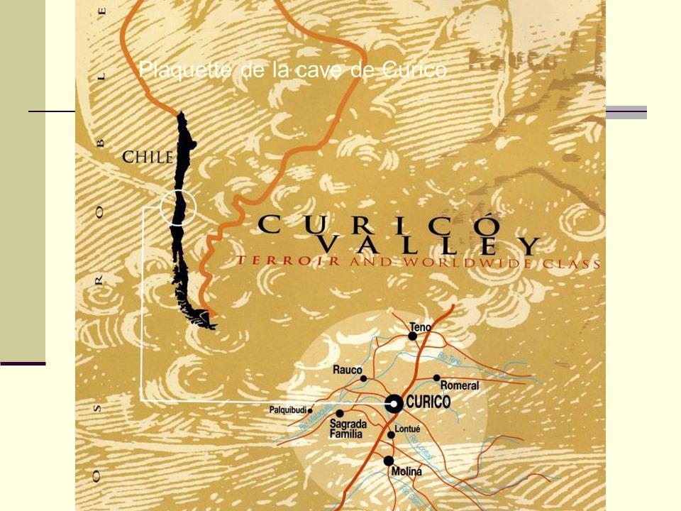 Plaquette de la cave de Curico