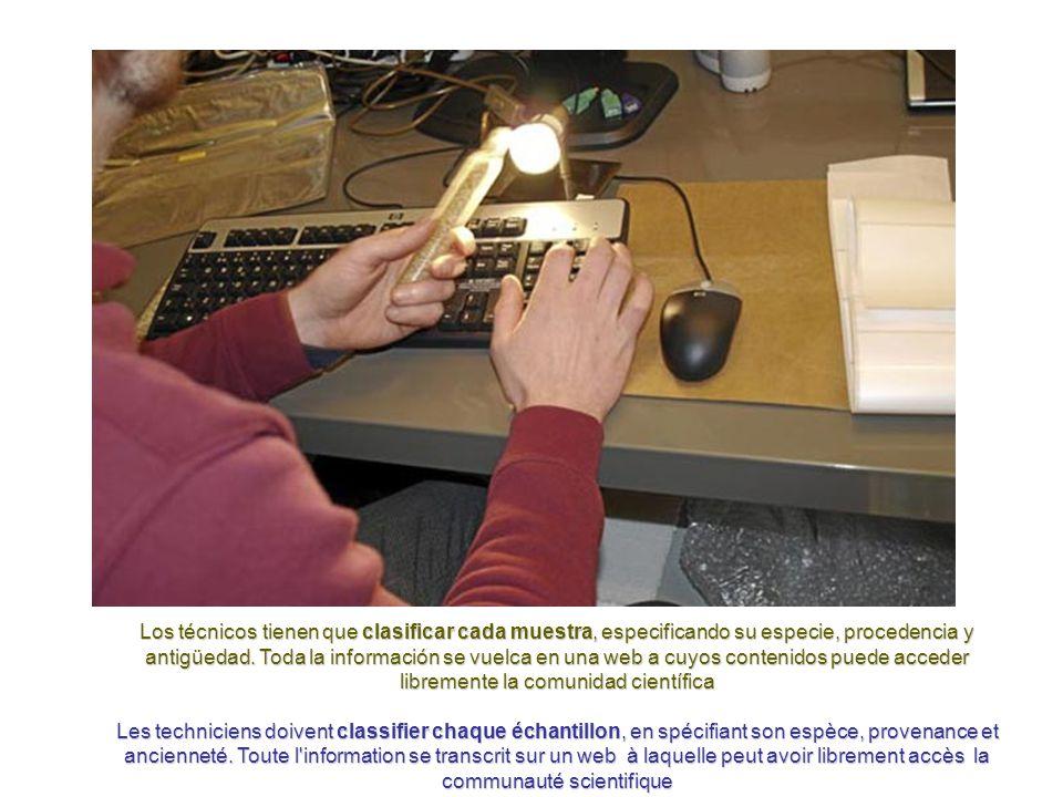 Al final del pasadizo, se encuentra la sala de control donde los técnicos de la bóveda registran en los ordenadores del centro cada muestra de semillas que va llegando al búnker desde todos los países del mundo.