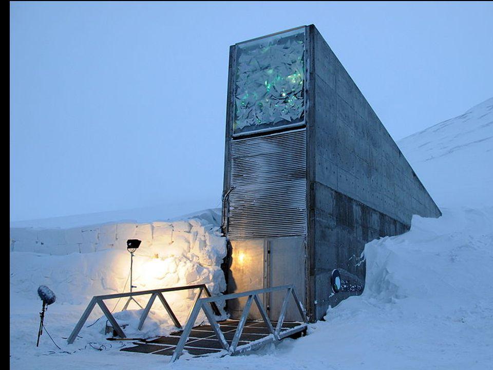 La Svalbard International Seed Vault (SISV), también conocida como la bóveda del fin del mundo , está diseñada para guardar muestra de todas las variedades de semillas conocidas por el hombre.