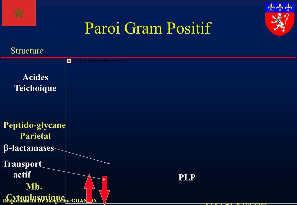 S.J.R.T. H.C.R. 12/12/2014 Structure Diaporama du Dr. Jacqueline GRANDO. Paroi Gram Positif Mb. Cytoplasmique Peptido-glycane Parietal  -lactamases P