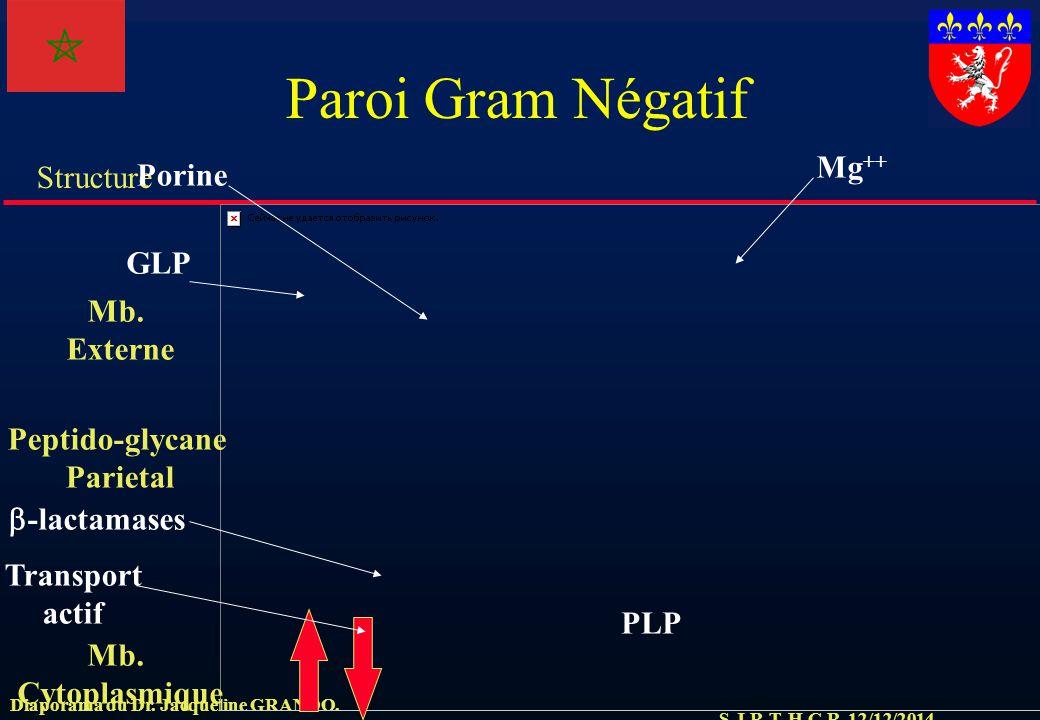 S.J.R.T. H.C.R. 12/12/2014 Structure Diaporama du Dr. Jacqueline GRANDO. Paroi Gram Négatif Mb. Cytoplasmique Mb. Externe Peptido-glycane Parietal GLP