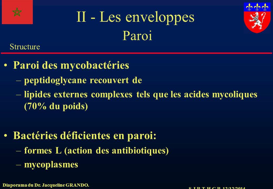 S.J.R.T. H.C.R. 12/12/2014 Structure Diaporama du Dr. Jacqueline GRANDO. II - Les enveloppes Paroi Paroi des mycobactéries –peptidoglycane recouvert d