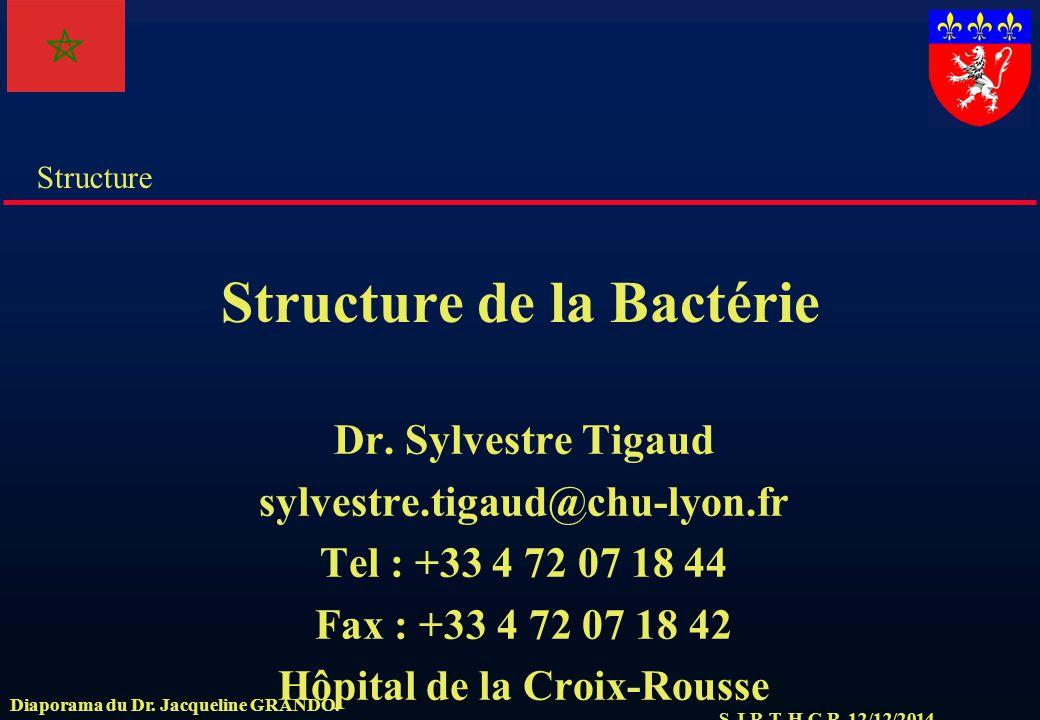 S.J.R.T. H.C.R. 12/12/2014 Structure Diaporama du Dr. Jacqueline GRANDO. Structure de la Bactérie Dr. Sylvestre Tigaud sylvestre.tigaud@chu-lyon.fr Te