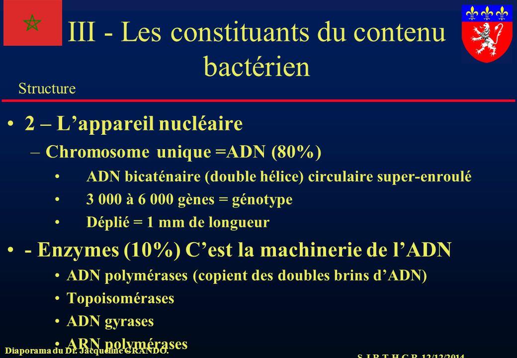 S.J.R.T. H.C.R. 12/12/2014 Structure Diaporama du Dr. Jacqueline GRANDO. III - Les constituants du contenu bactérien 2 – L'appareil nucléaire –Chromos
