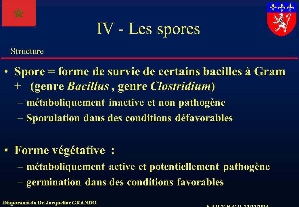 S.J.R.T. H.C.R. 12/12/2014 Structure Diaporama du Dr. Jacqueline GRANDO. IV - Les spores Spore = forme de survie de certains bacilles à Gram + (genre