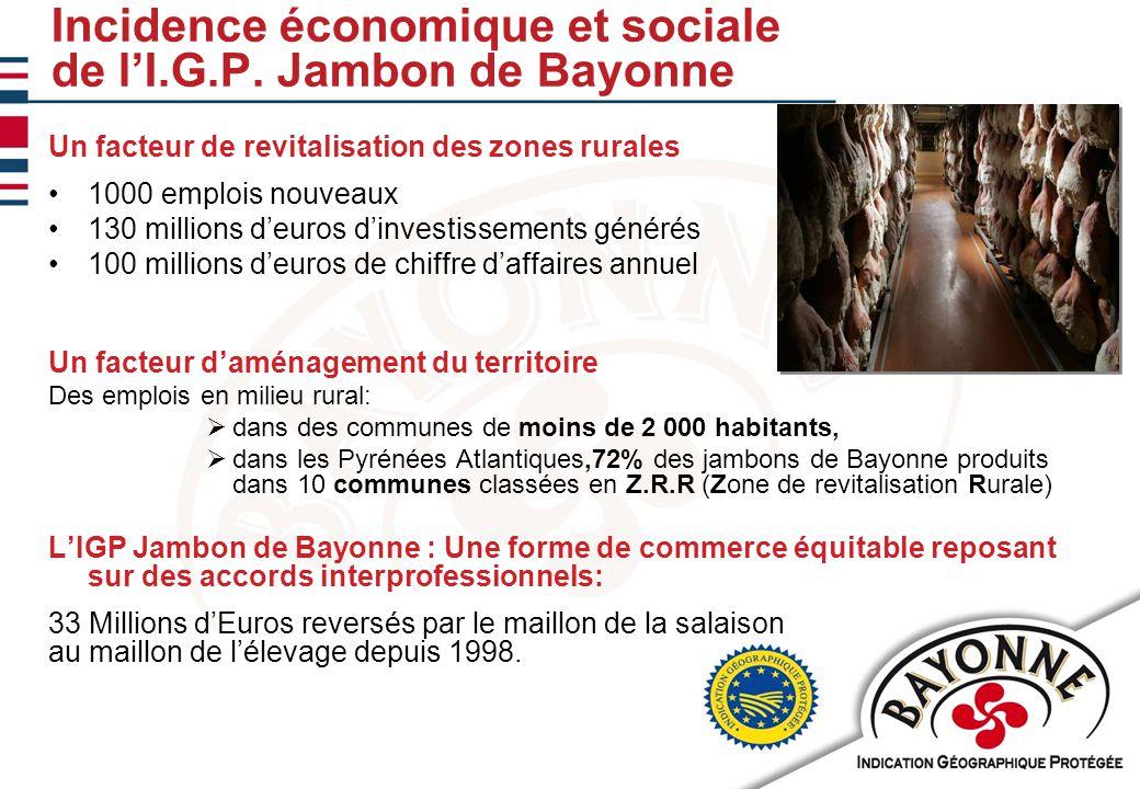 11/02/201010 Incidence économique et sociale de l'I.G.P.