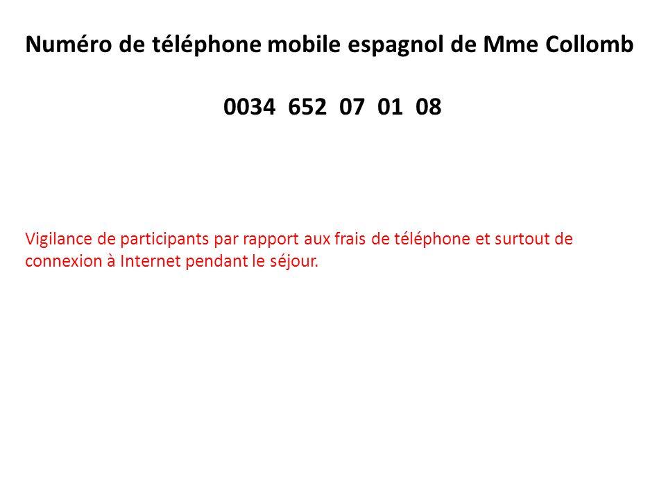 Numéro de téléphone mobile espagnol de Mme Collomb 0034 652 07 01 08 Vigilance de participants par rapport aux frais de téléphone et surtout de connex
