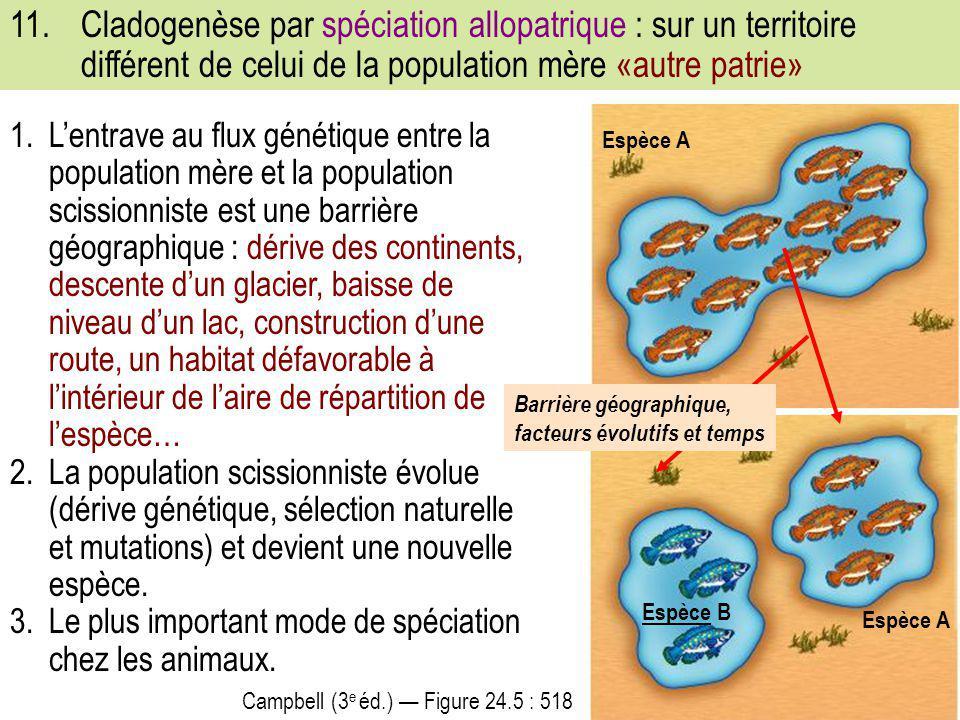 1.L'entrave au flux génétique entre la population mère et la population scissionniste est une barrière géographique : dérive des continents, descente