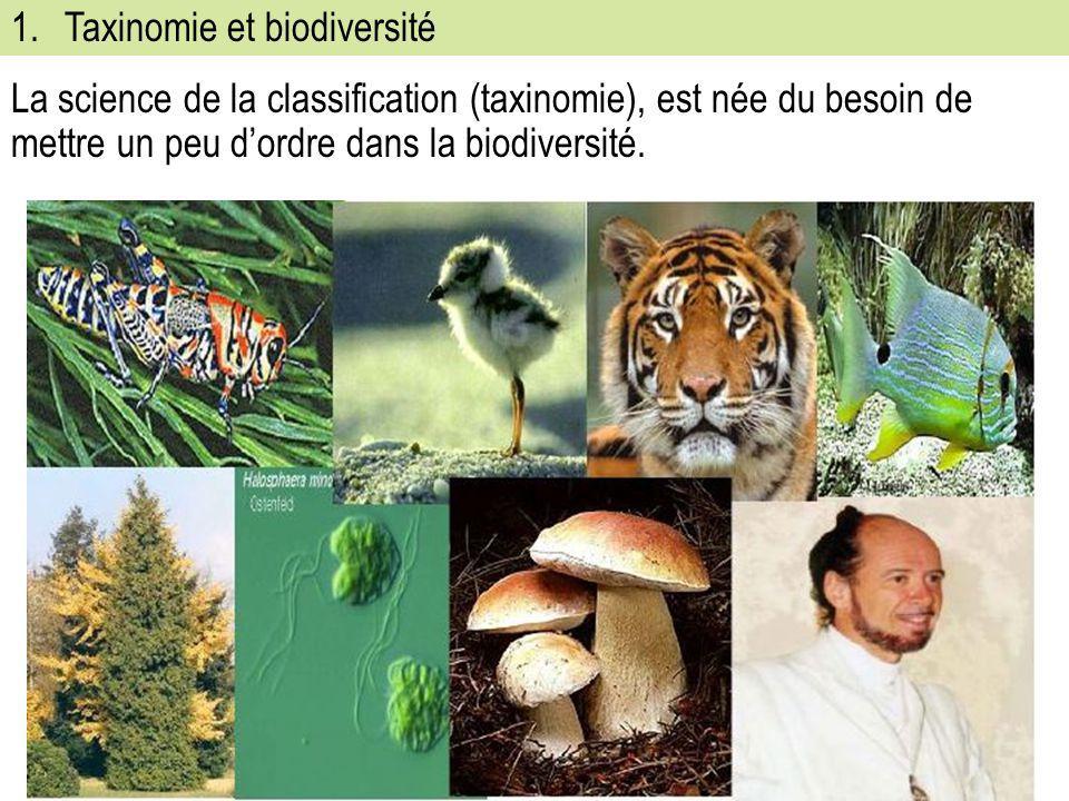 1.Taxinomie et biodiversité La science de la classification (taxinomie), est née du besoin de mettre un peu d'ordre dans la biodiversité.