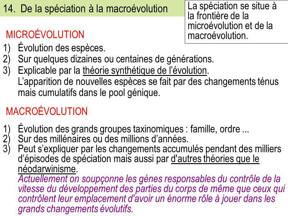 1)Évolution des espèces. 2)Sur quelques dizaines ou centaines de générations. 3)Explicable par la théorie synthétique de l'évolution. L'apparition de