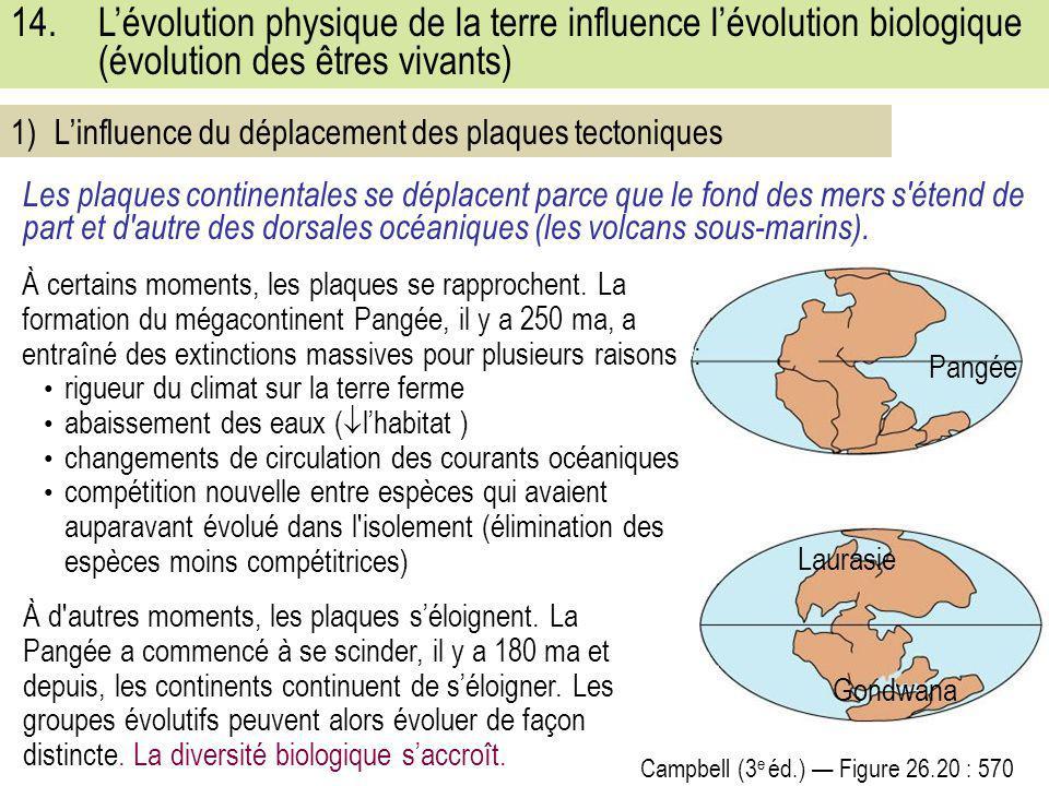 14.L'évolution physique de la terre influence l'évolution biologique (évolution des êtres vivants) Campbell (3 e éd.) — Figure 26.20 : 570 Les plaques