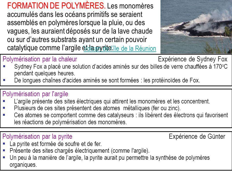 FORMATION DE POLYMÈRES. FORMATION DE POLYMÈRES. Les monomères accumulés dans les océans primitifs se seraient assemblés en polymères lorsque la pluie,