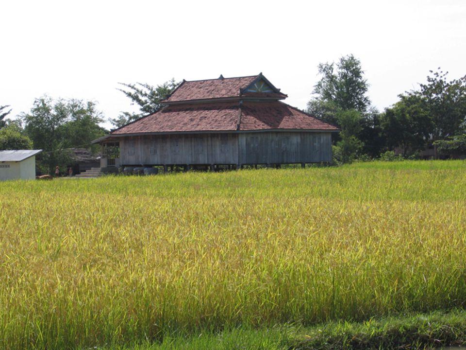 Des mosquées au toit en pente, semblables aux pagodes bouddhiques