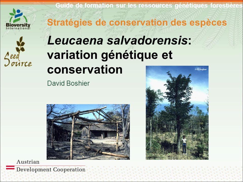 Guide de formation sur les ressources génétiques forestières Stratégies de conservation des espèces Leucaena salvadorensis: variation génétique et conservation David Boshier