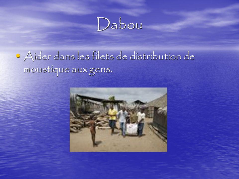 Dabou Aider dans les filets de distribution de moustique aux gens.