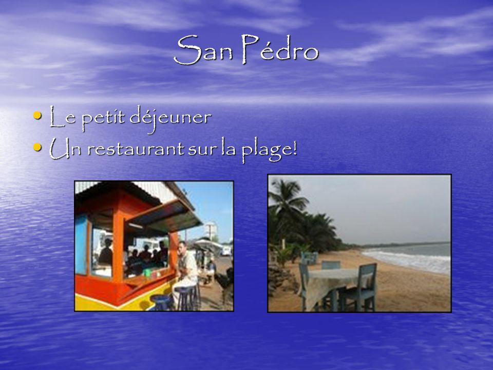 San Pédro Une promenade au jardin! Une promenade au jardin! Visiter une ville Visiter une ville