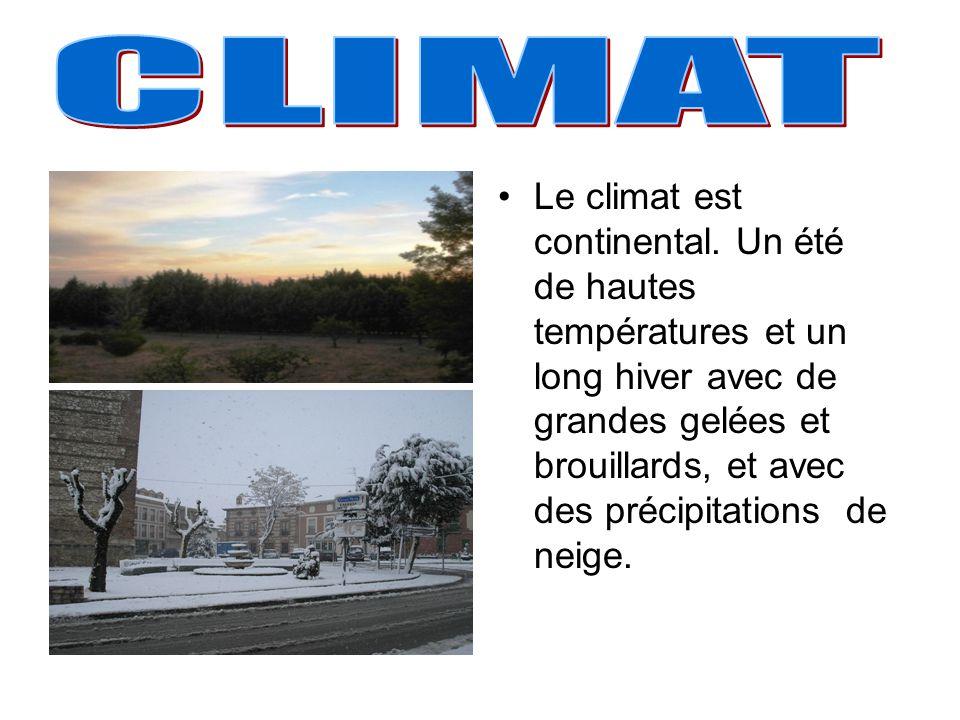 Le climat est continental.