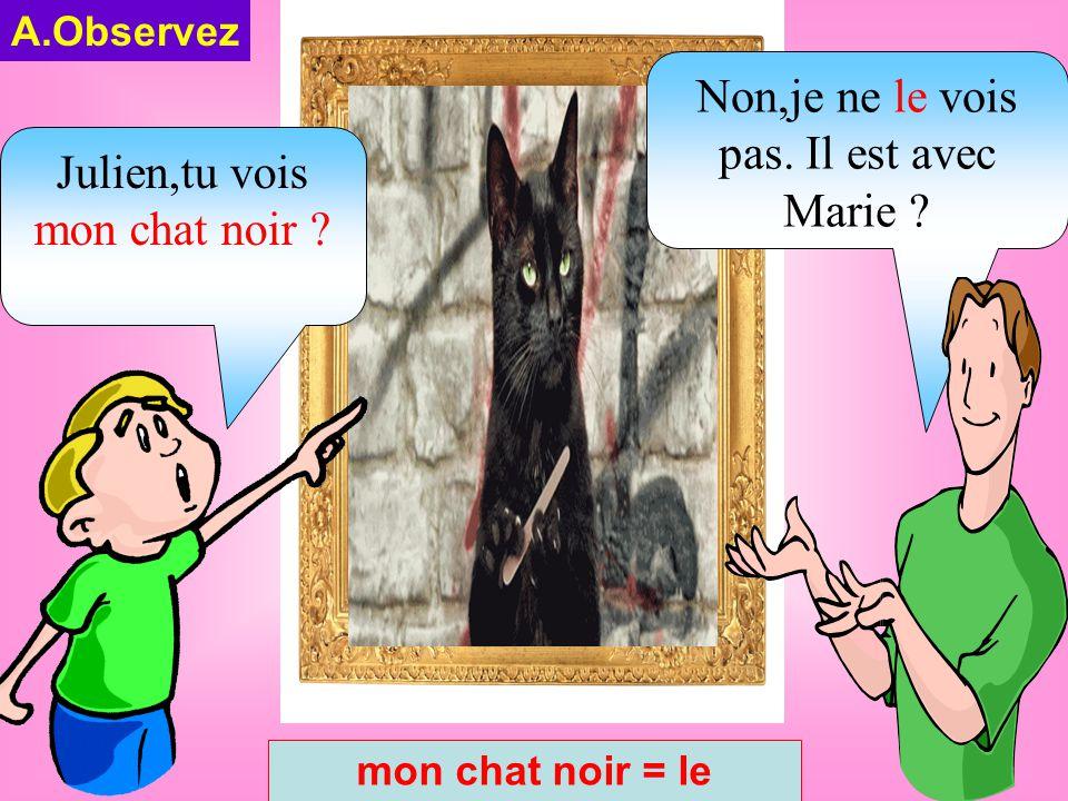 A.Observez mon chat noir = le Julien,tu vois mon chat noir .