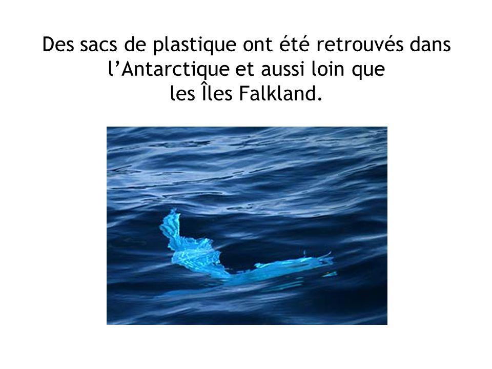 Des sacs de plastique ont été retrouvés dans l'Antarctique et aussi loin que les Îles Falkland.