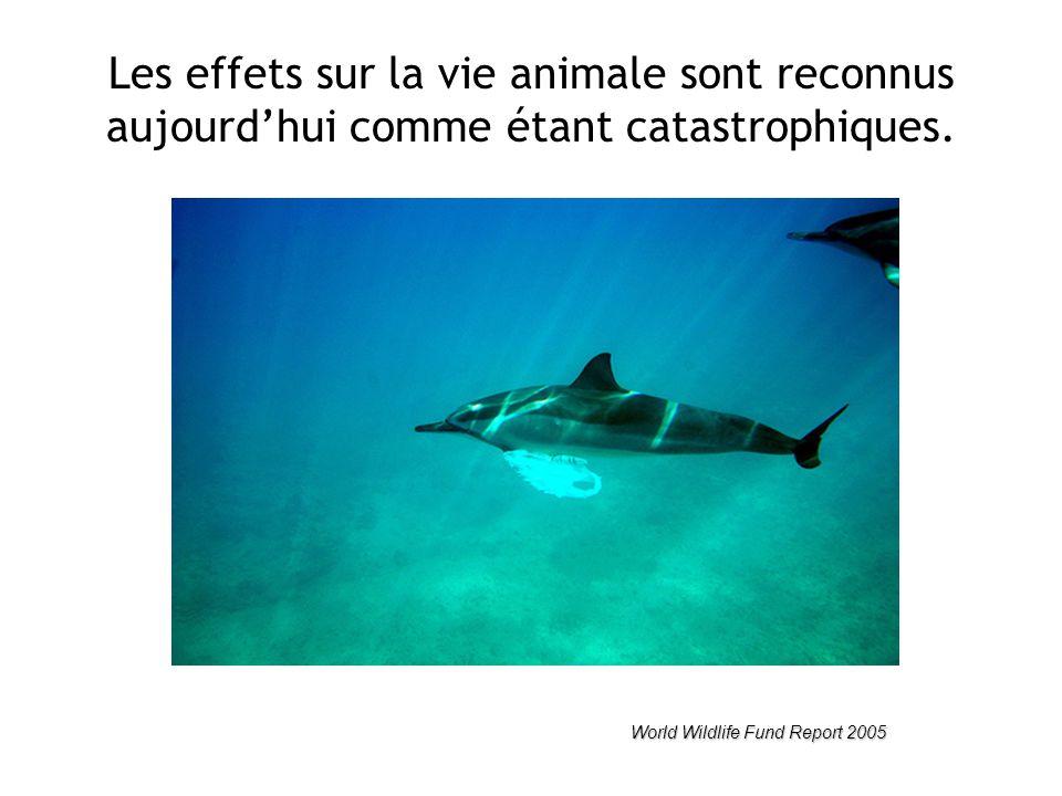 Les effets sur la vie animale sont reconnus aujourd'hui comme étant catastrophiques.