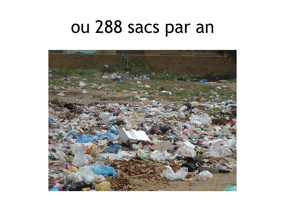 ou 288 sacs par an