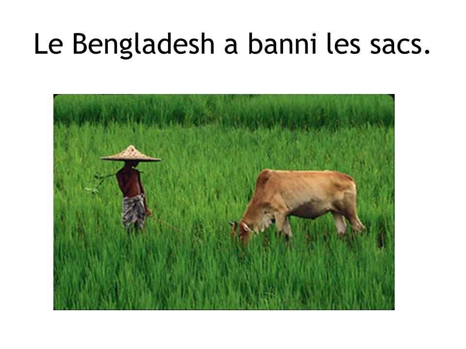 Le Bengladesh a banni les sacs.