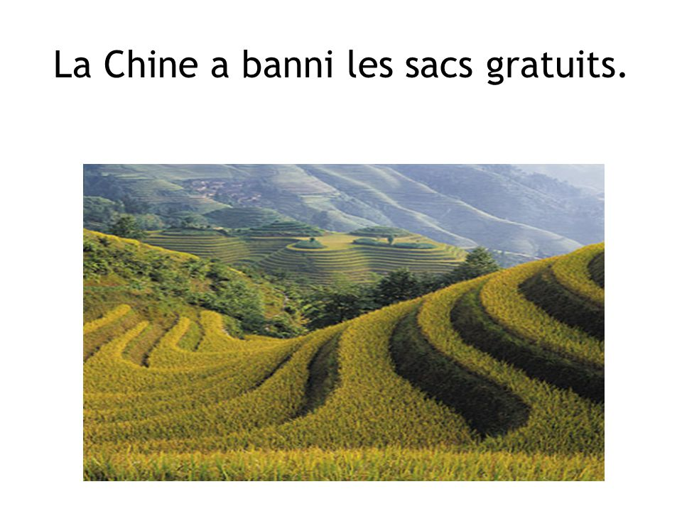 La Chine a banni les sacs gratuits.