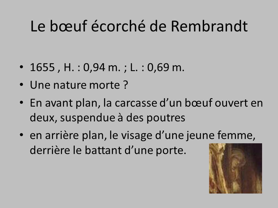 Le bœuf écorché de Rembrandt 1655, H. : 0,94 m. ; L. : 0,69 m. Une nature morte ? En avant plan, la carcasse d'un bœuf ouvert en deux, suspendue à des