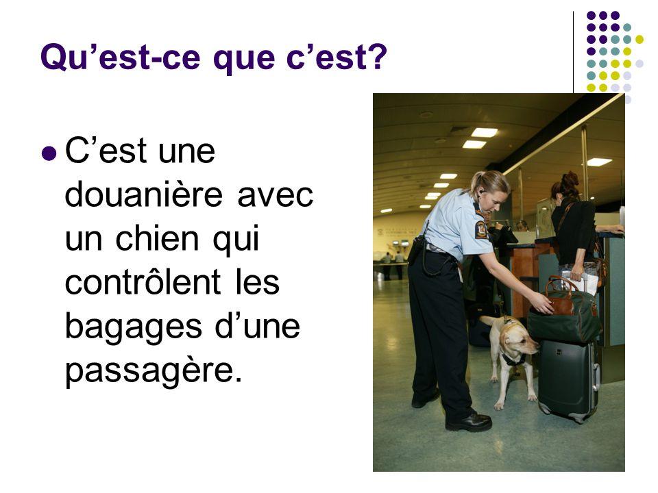 Qu'est-ce que c'est? C'est une douanière avec un chien qui contrôlent les bagages d'une passagère.