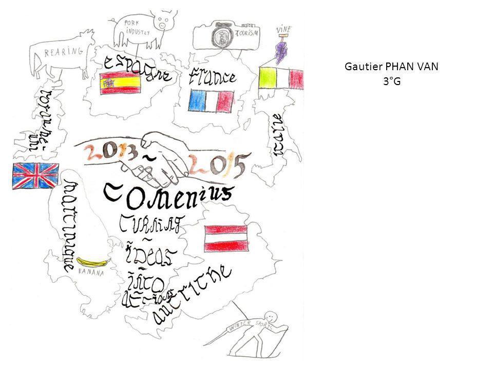Gautier PHAN VAN 3°G