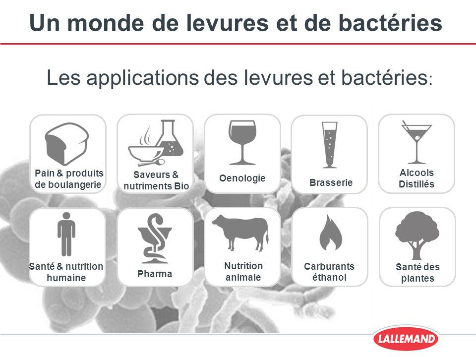 Un monde de levures et de bactéries Les applications des levures et bactéries : Nutrition animale Saveurs & nutriments Bio Pain & produits de boulange