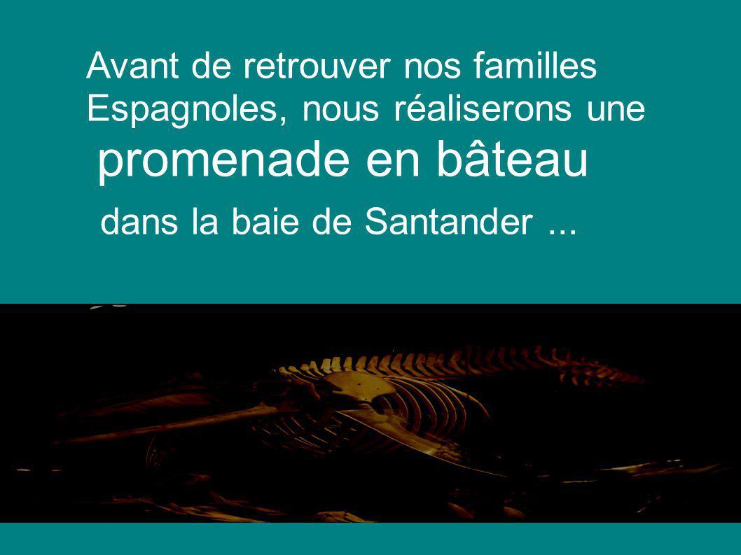 Avant de retrouver nos familles Espagnoles, nous réaliserons une promenade en bâteau dans la baie de Santander...