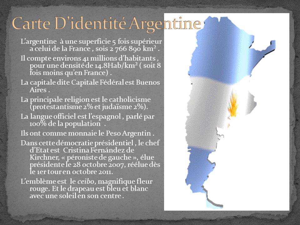 L'argentine à une superficie 5 fois supérieur a celui de la France, sois 2 766 890 km². Il compte environs 41 millions d'habitants, pour une densité d