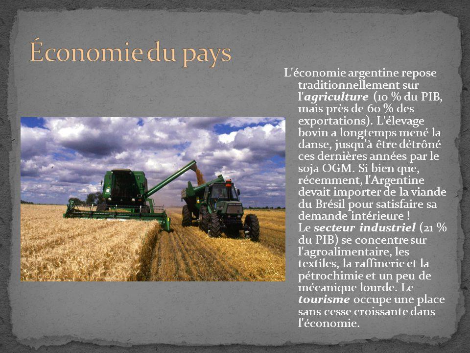 L'économie argentine repose traditionnellement sur l'agriculture (10 % du PIB, mais près de 60 % des exportations). L'élevage bovin a longtemps mené l