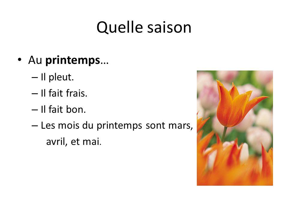 Quelle saison Au printemps… – Il pleut. – Il fait frais. – Il fait bon. – Les mois du printemps sont mars, avril, et mai.