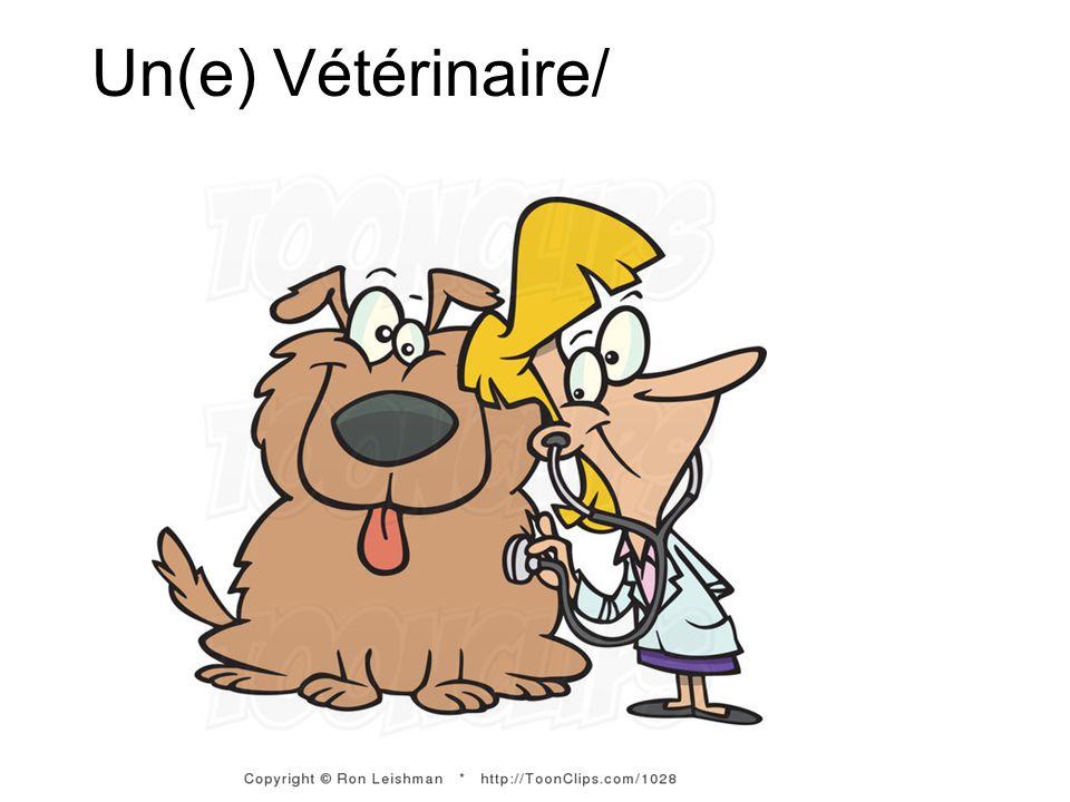 Un(e) Vétérinaire/