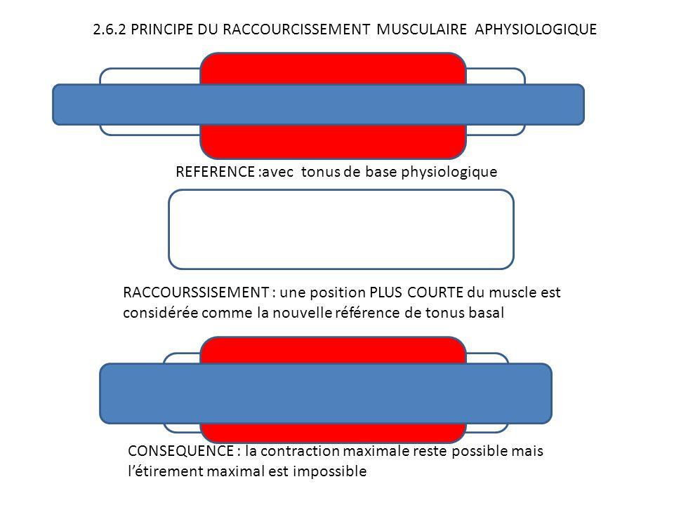 2.6.2 PRINCIPE DU RACCOURCISSEMENT MUSCULAIRE APHYSIOLOGIQUE REFERENCE :avec tonus de base physiologique RACCOURSSISEMENT : une position PLUS COURTE d