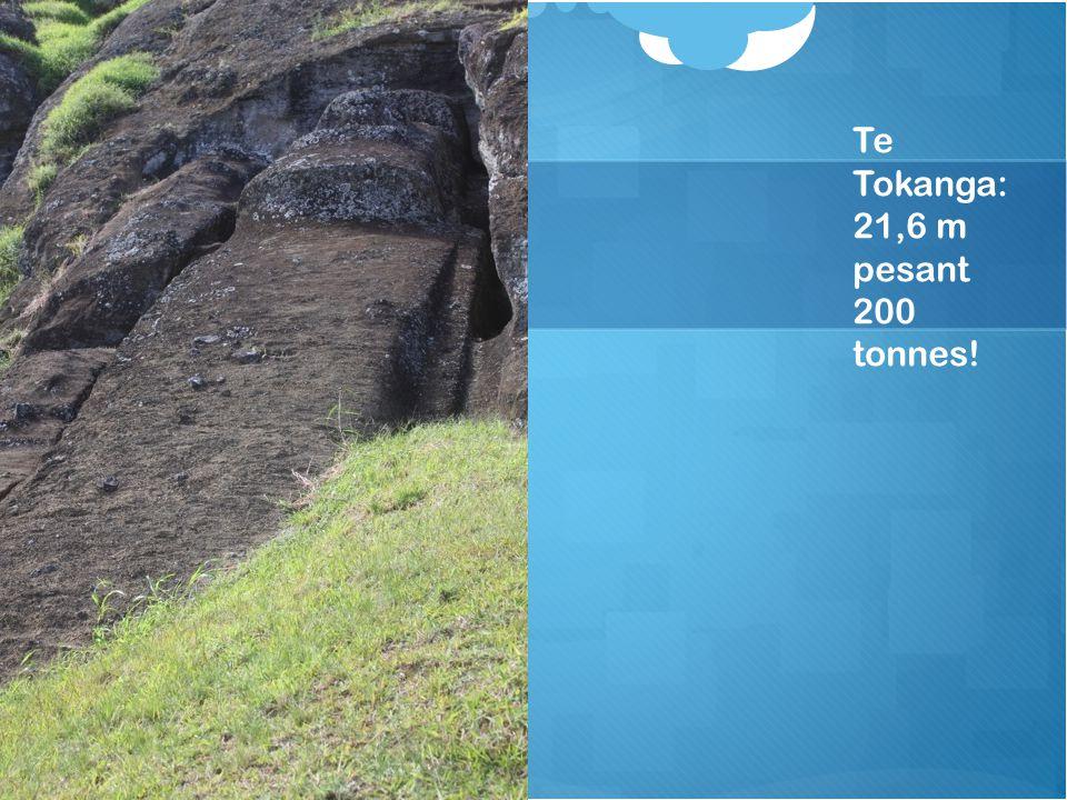 Te Tokanga: 21,6 m pesant 200 tonnes!
